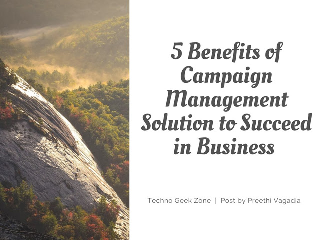 5 Benefits of Campaign Management Solution to Succeed in Business